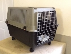 Dog Carrying Box for sale