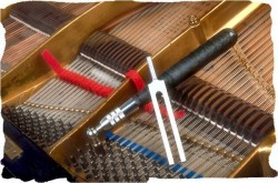 Piano Tuning and Reconditioning
