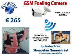 Foaling Camera