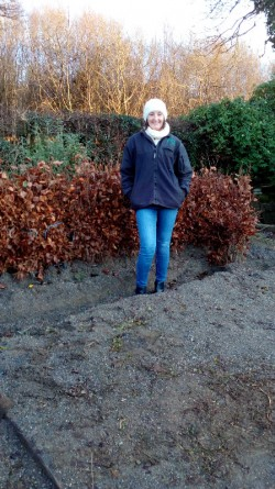 THORN HEDGING