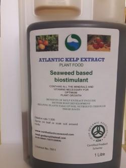 Seaweed fertiliser liquid