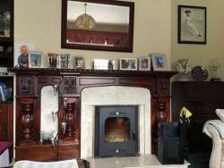 Mahogany and Marble fireplace