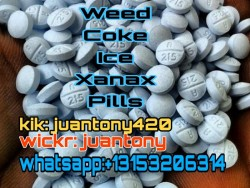 Pills/powders are available here and Overnight delivery