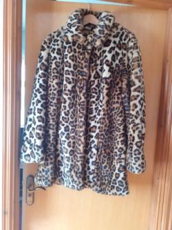Ladies Capsule Leopard Print Coat.