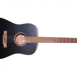 Acoustic Guitar Hudson HD-100S Guitar