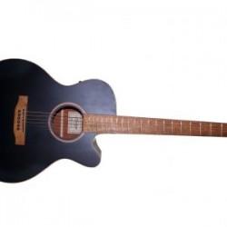 Acoustic Guitar Hudson HF-120S Guitar