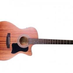 Acoustic Guitar Hudson HF-55-CE Guitar