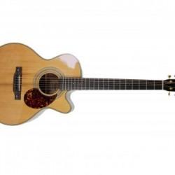 Acoustic Guitar Hudson HF-STX-E