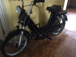 Fantic Moped. 50 cc.
