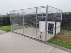 Galvanised Dog Pen Cages