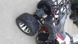 Motor Bull Quad