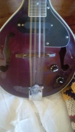 Wesley Semi Acoustic Mandolin plus hard Case.