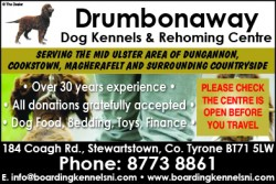 Drumbonaway Dog Kennels & Rehoming Centre