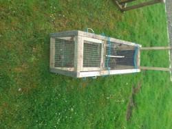 Fox trap for sale
