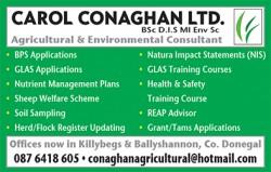 Carol Conaghan Ltd.