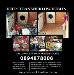 20% discount on hoarder deep clean packages