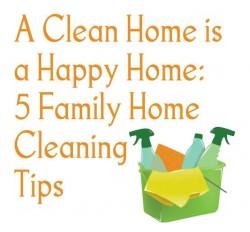 Cleaner / housekeeper / home help