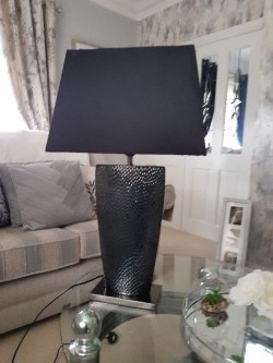 Beautiful light, black shade and silver  base