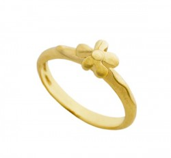 Nine Carat Gold Ring