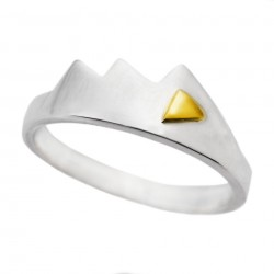 Silver Ring & 18ct Gold